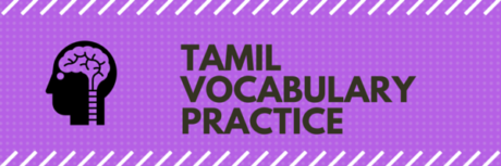 tamil-vocabulary-practice